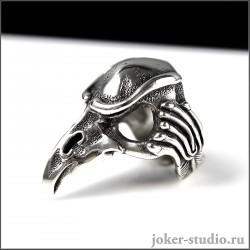 """Кольцо череп ворона """"Кутх"""" атрибут шамана символ мудрости и сотворение мира"""
